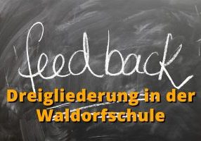 feedback_DG_FWS